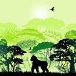 Paneel Wild Shadow apen