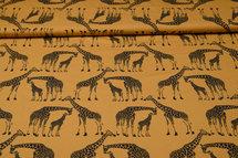 Africa Africa M6671/4